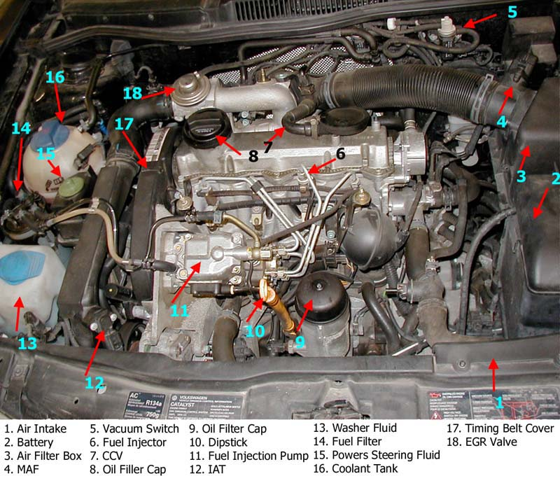 Picture Of Engine - Labeled