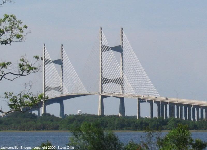 Dames Point Bridge- Jacksonville Bugs For Breakfast post GtG photo shoot