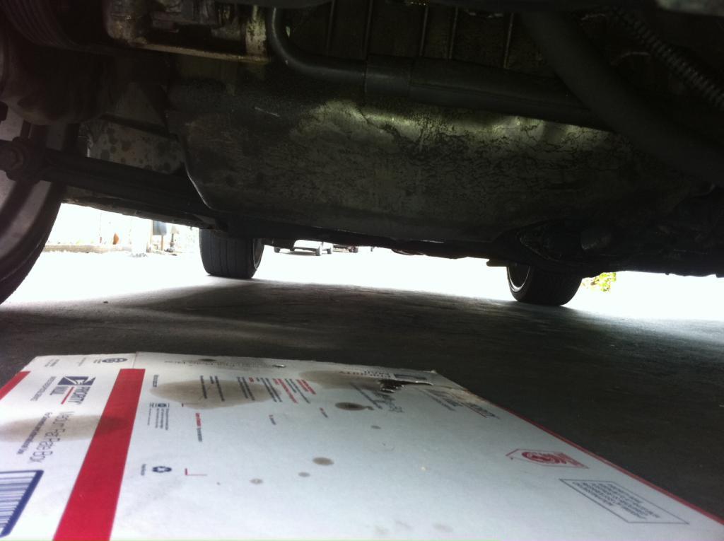 beetle oil leak!!!! - NewBeetle.org Forums