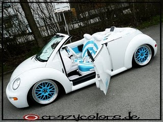 Attached Images/Files & Fabricator/Installer of suicide doors - NewBeetle.org Forums pezcame.com